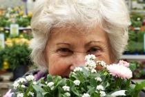 Pour une bonne mutuelle senior, quelles sont les garanties indispensables ?